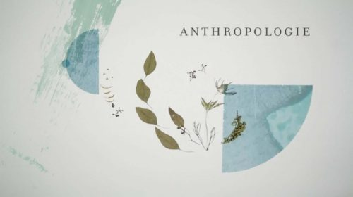 anthropologie-stop-motion-animation